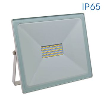 TREND LED 50W/W
